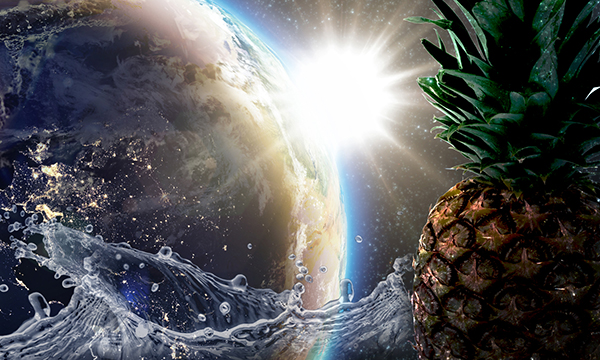 Earth and sun from space with water and pineapple